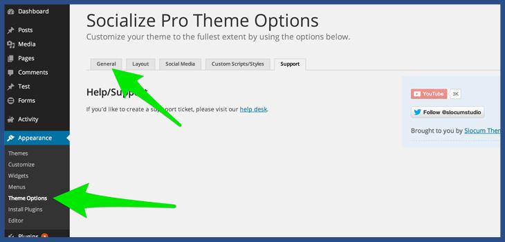 Socialize WordPress Magazine Theme Options