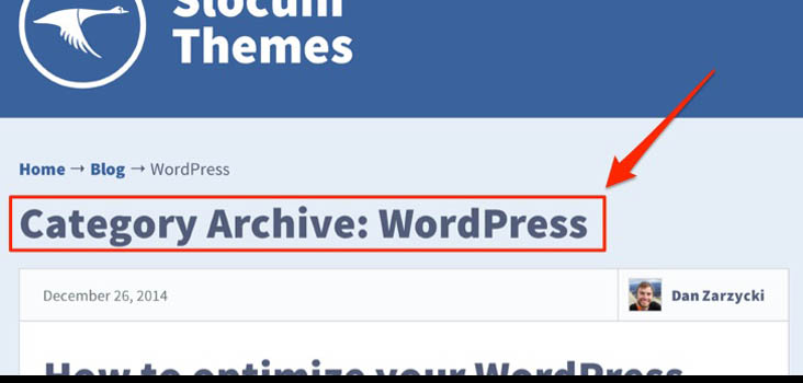 Remove or hide category archive titles wordpress