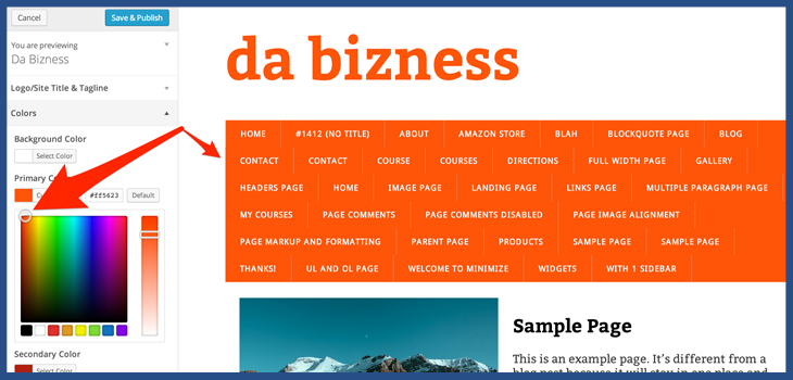 WordPress theme color customizer