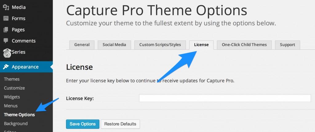 Theme_Options_‹_Da_Bizness_—_WordPress