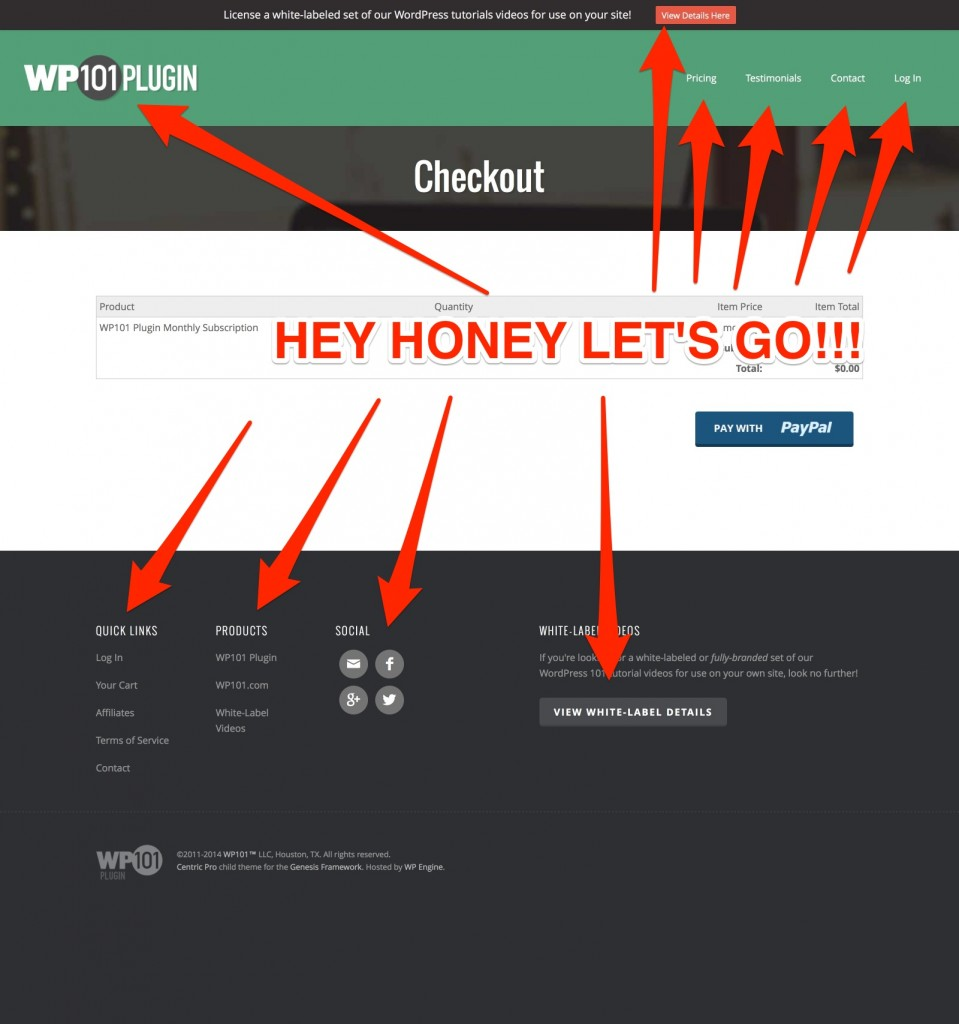 WP 101 Checkout Example
