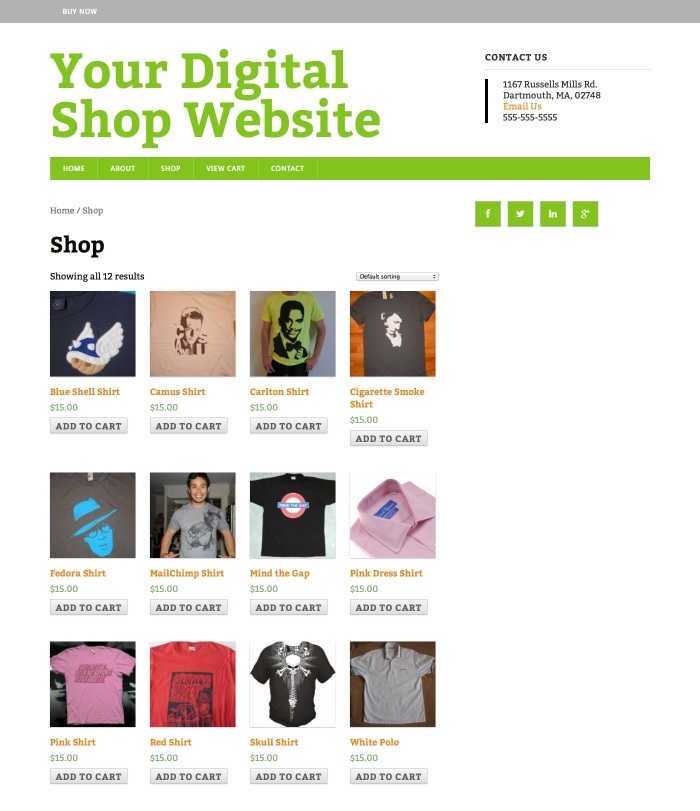 WordPress eCommerce SEO theme