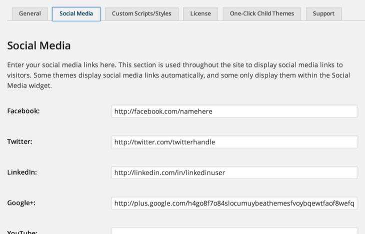 Add Social Media buttons wordpress