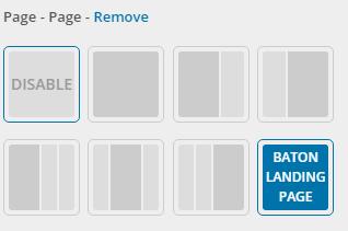 BatonLandingPage
